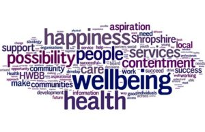 Youth Development and Wellbeing Survey in Final Stages