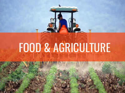 food-and-agriculture